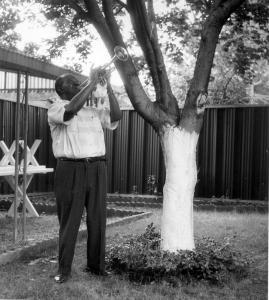 Louis Armstrong playing Trumpet in his backyard