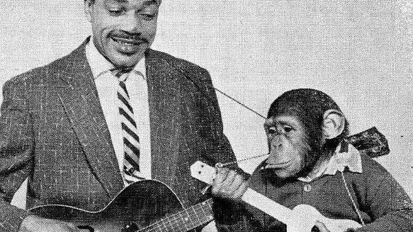 cropped Slim Gaillard and Monkey - Why Be Legendary?