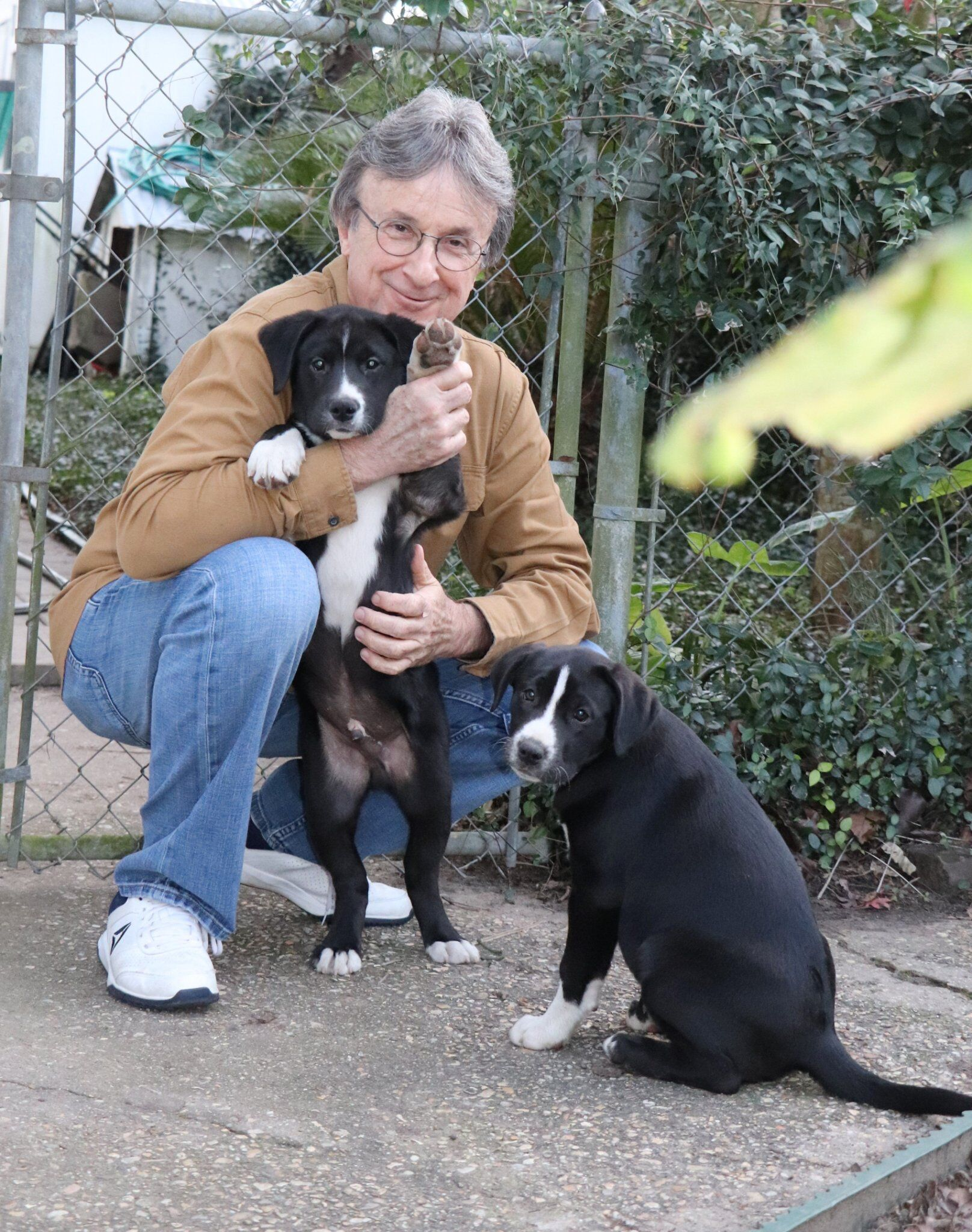 Steve with new puppies Cosmo and Luna