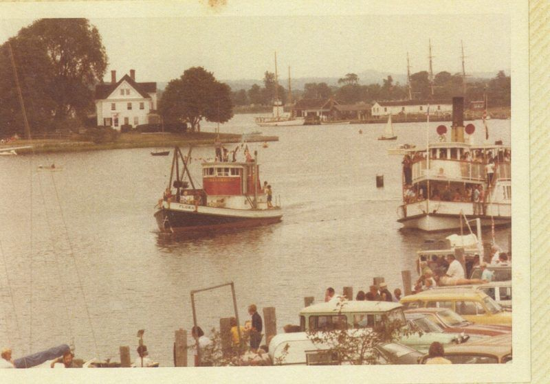 Flora in the 1970's
